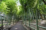すずめのお宿緑地公園 約850m(徒歩11分)