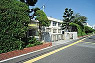 広島市立江波中学校 約1,750m(徒歩22分)