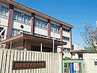 市立大宮小学校 約290m(徒歩4分)