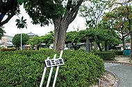 座王公園 約10m(徒歩1分)