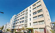墨田中学校 約370m(徒歩5分)