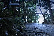 代々木八幡宮 約90m(2017年10月撮影)