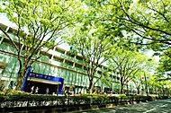 代々木公園 約270m(2017年10月撮影)