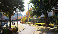 高松くすのき公園 約20m(徒歩1分)