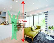 天井に小梁が出ないボイドスラブ工法の採用により、天井高を2.5m確保しました。広々とした開放的な住空間を実感できます。