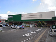 COOPみやぎ生協 榴岡店(徒歩8分/約605m)