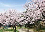 皇后崎公園 約300m(徒歩4分)