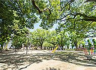 栄町街区公園 約430m(徒歩6分)