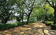 京橋川河畔緑地 約350m(徒歩5分)