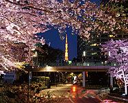 東京ミッドタウン 約1,130m(徒歩15分)