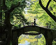有栖川宮記念公園 約680m(徒歩9分)
