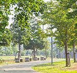 東松戸中央公園 約250m(徒歩4分)
