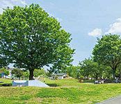 新鶴見公園 約150m(徒歩2分)