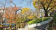 清和公園 約560m(徒歩7分)