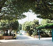 桜山公園 約10m(徒歩1分)