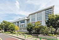 区立駒沢小学校 約480m(徒歩6分)