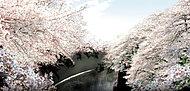 石神井川 約840m(徒歩11分)