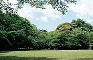 駒場公園 約1,020m(徒歩13分)