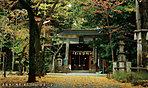 赤坂氷川神社 約1,200m(徒歩15分)