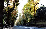 赤坂御用地周辺 約1,6km