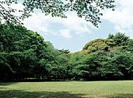 代々木上原駅周辺の街並み 約400m(徒歩5分)