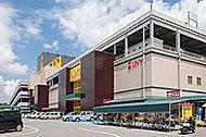 アピタ大府店 約2,100m(車4分)