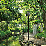 小松川境川親水公園 約560m(徒歩7分)