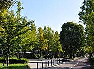 富士見公園 徒歩10分/約740m※1