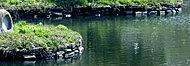野間大池 約540m