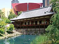 小倉城庭園 約840m(徒歩11分)