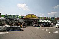 JAグリーンセンター朝日ヶ丘店 約80m(徒歩1分)