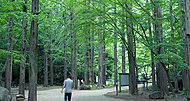 生田緑地 約940m(徒歩12分)