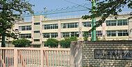 区立千鳥小学校 約430m(徒歩6分)