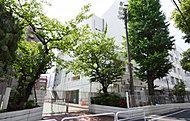 台東区立柏葉中学校 約980m(徒歩13分)