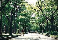 本町界隈 約380m(徒歩5分)