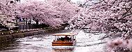 琵琶湖疎水 約550m(徒歩7分)