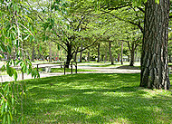 岡崎公園 約620m(徒歩8分)