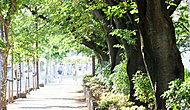 桜通り 約10m(徒歩1分)