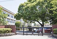 若葉小学校 約360m(徒歩5分)