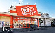 ザ・ビッグエクスプレス平岸店 約80m(徒歩1分)