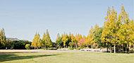 糀台公園 約300m(徒歩4分)