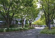中津中央公園 約250m(徒歩4分)