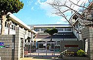 市立真陽小学校 約480m(徒歩6分)