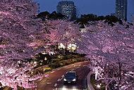 東京ミッドタウン周辺の街並 約780m(徒歩10分)