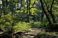 高橋是清翁記念公園 約400m(徒歩5分)