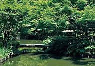 池田山公園 約400m(徒歩5分)