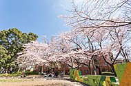 三田第一公園 約240m(徒歩3分)