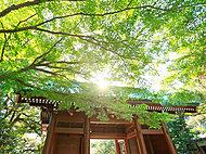 鎌倉大仏殿高徳院 約1,140m(徒歩15分)