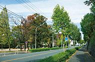 周辺の街並 約440m(徒歩6分)