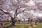 【武蔵野中央公園】約1.4km(自転車6分)